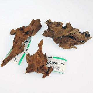 Mangroven Wurzel